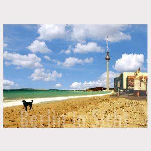 Postkarte Hund am Strand Berlin