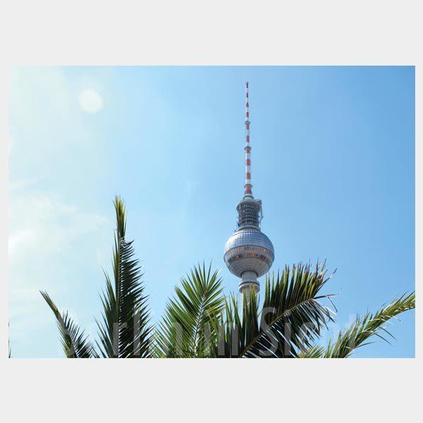 Postkarte Fernsehturm mit Palme
